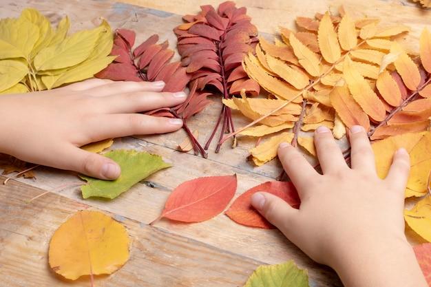 Adolescents, mains, coucher, sur, feuilles automne, vue côté