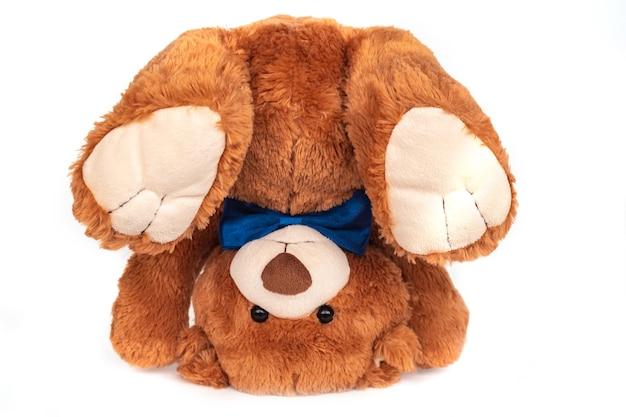 Adorable ours en peluche brun moelleux drôle isolé