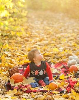 Adorable petit garçon sur une couverture à la recherche de suite