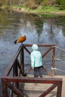 Adorable petite fille caucasienne regardant le lac avec le canard dans le parc du printemps. vue arrière