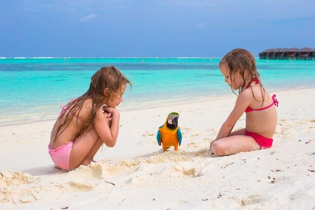 Adorables petites filles à la plage avec perroquet coloré