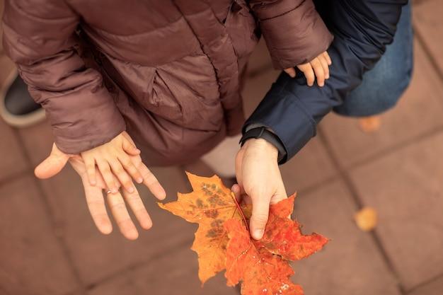 Un adulte tient la main de son enfant dans sa paume, sa fille et son père jouent avec des feuilles d'érable dans la nature
