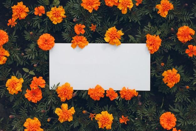 Affiche en papier blanc avec espace copie sur parterre de fleurs. feuille de modèle vierge sans inscription en fleurs.