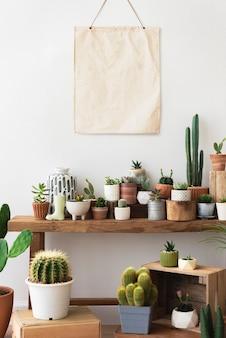Affiche vierge en toile suspendue au-dessus d'une étagère pleine de cactus et de plantes succulentes