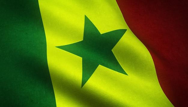 Agitant le drapeau du sénégal