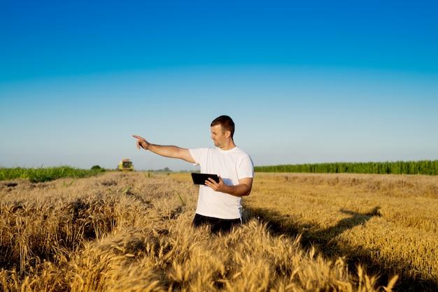 Agriculteur au champ de blé vérifiant les progrès d'internet en ligne.