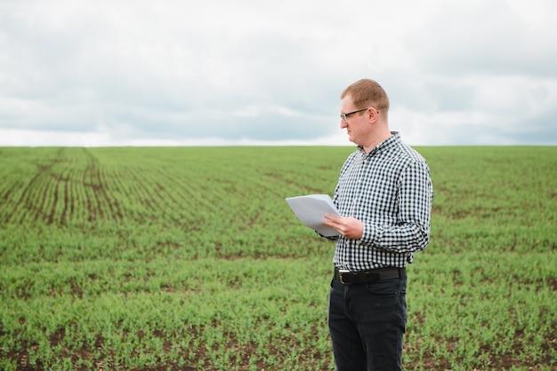 Agriculteur sur un champ de pois. concept de l'agriculture. l'agriculteur travaille dans le champ