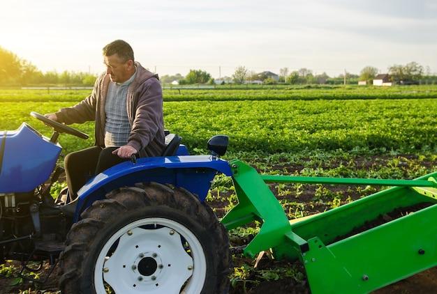 Un agriculteur conduit un tracteur à travers le champ agricole récolte les premières pommes de terre au début du printemps sur les terres agricoles