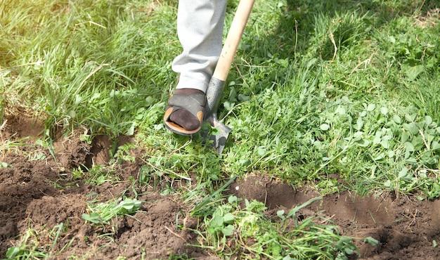 L'agriculteur creuse le sol avec une pelle dans le jardin.