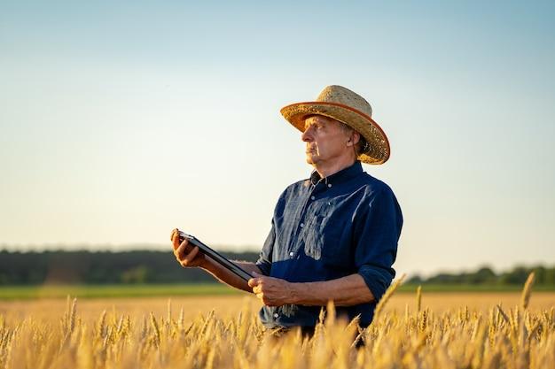 Agriculteur dans le champ avec récolte sèche. champ de blé d'or sur fond flou.
