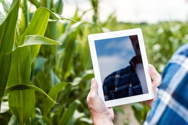 Agriculteur dans le champ tenant une tablette moderne
