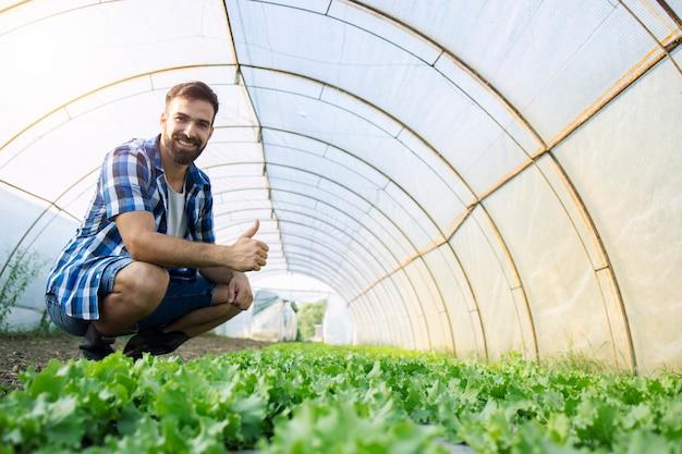 Agriculteur debout dans une ferme biologique et montrant les pouces vers le haut.
