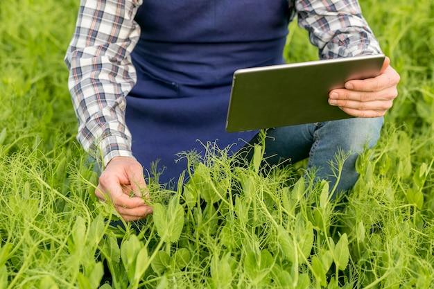 Agriculteur avec gros plan de tablette