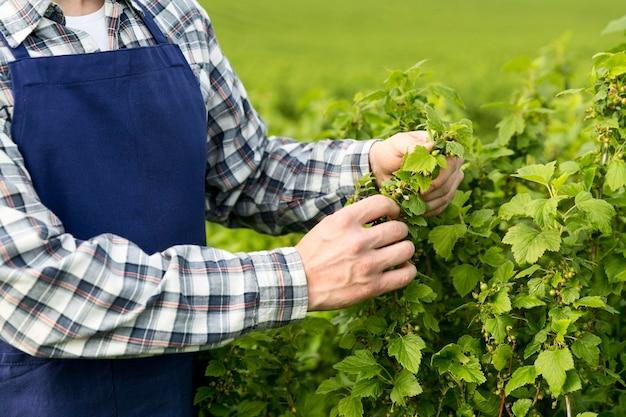 Agriculteur en gros plan travaillant