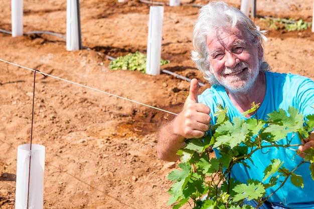 Un agriculteur heureux et fier contrôle la croissance de son nouveau vignoble en faisant des gestes d'accord avec la main - un homme âgé à la retraite actif aux cheveux blancs et à la barbe à la campagne