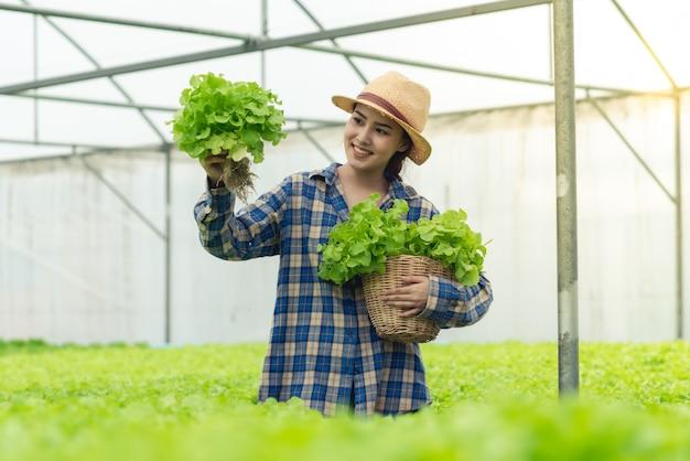 Agriculteur heureux de travailler la ferme de légumes salade biologique