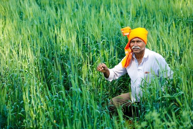 Agriculteur indien au champ de blé doré
