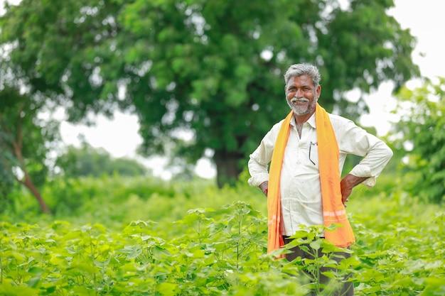 Agriculteur indien au champ de coton, inde