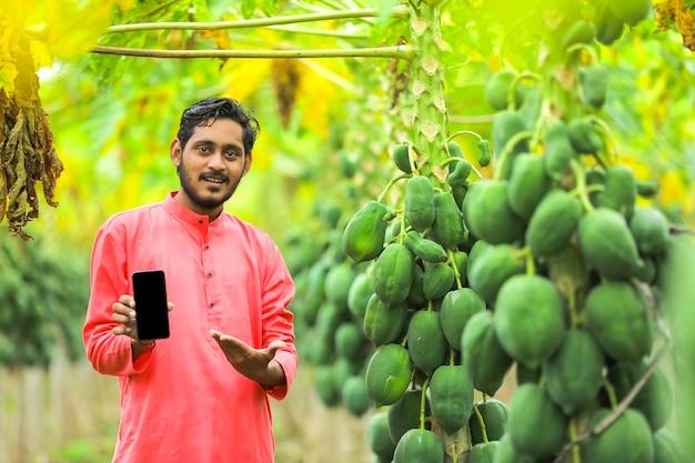 Agriculteur indien en costume traditionnel sur le champ de papaye