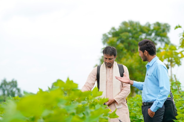 Agriculteur indien discutant avec l'agronome à la ferme et recueillant des informations