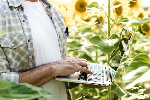 Agriculteur inspectant champ de tournesol été ensoleillé