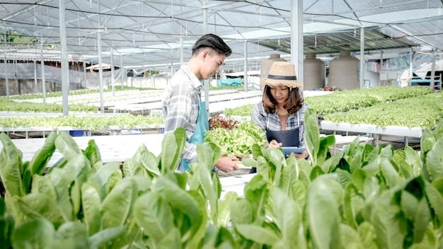 Un agriculteur inspecte la qualité de la salade de légumes biologiques et de la laitue de la ferme hydroponique et prend des notes sur le presse-papiers