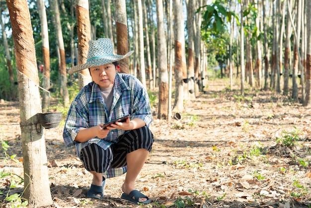 Agriculteur intelligent dans une plantation d'arbres