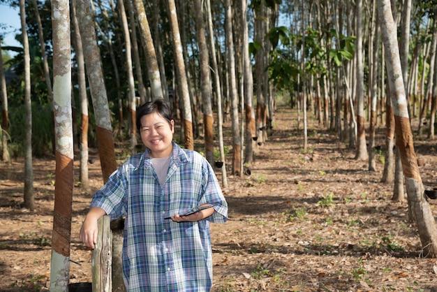 Agriculteur intelligent plantation d'hévéas