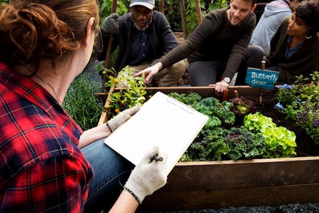 Agriculteur avec des légumes biologiques issus de la nature