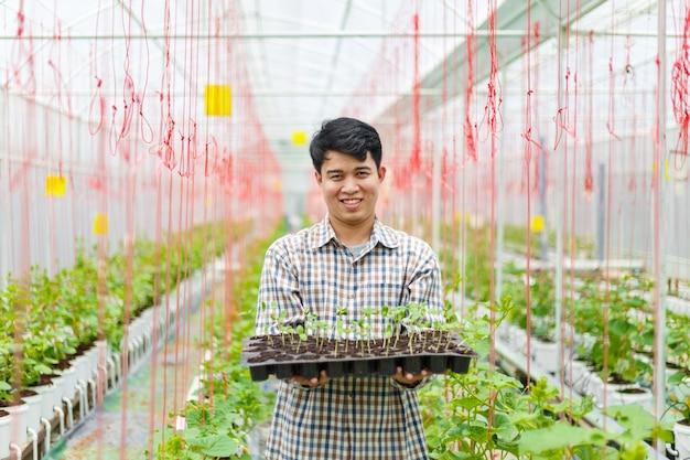 L'agriculteur porte un plateau de semis de melon en serre