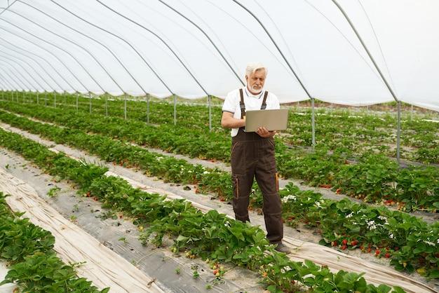 Agriculteur à la recherche de nouvelles informations utiles dans un ordinateur portable