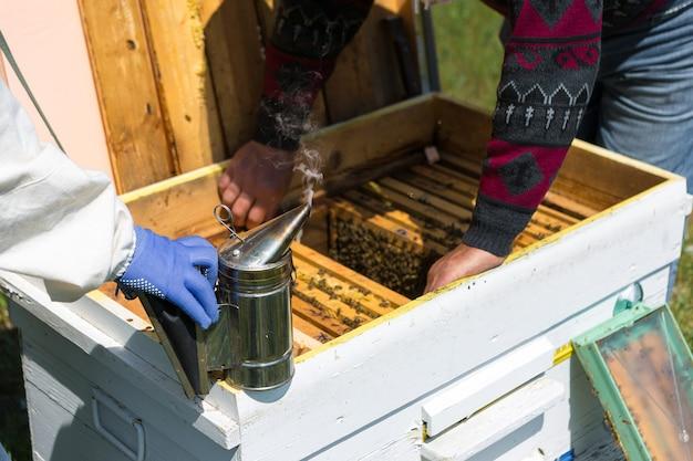 Un agriculteur sur un rucher détient des cadres avec des nids d'abeilles en cire