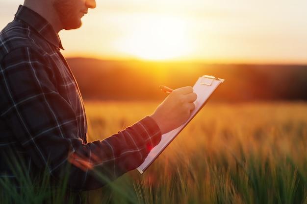 L'agriculteur se tient dans le champ de blé avec le dossier dans des mains