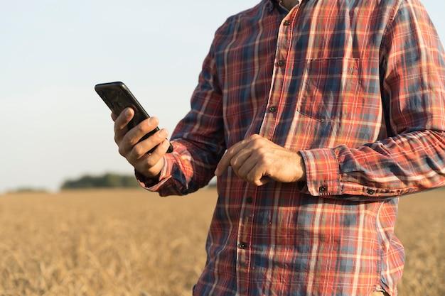Agriculteur avec un smartphone à la main dans le contexte d'un champ de blé pendant la récolte agri...