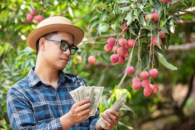 Les agriculteurs comptent les cartes pour la vente de litchis.