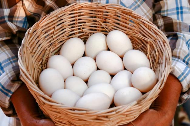 Les agriculteurs détiennent de nombreux œufs de canard dans un panier pour les manger.