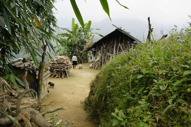 Agriculteurs et ruraux dans les rizières du vietnam