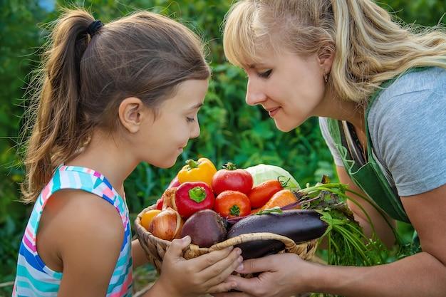 Agricultrice et enfant dans le jardin avec une récolte de légumes. mise au point sélective. enfant.