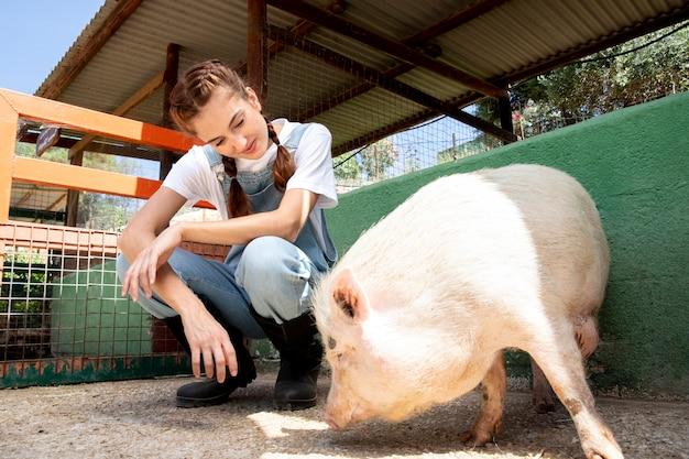 Agricultrice nourrissant les porcs