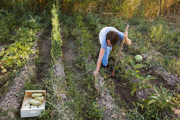 Une agricultrice travaillant sur le terrain