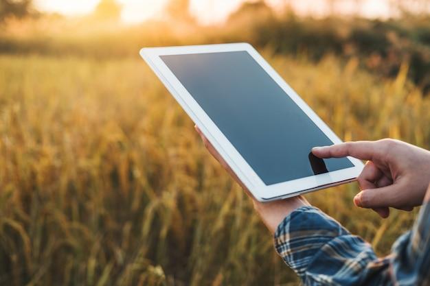 Agriculture intelligente technologie agricole et agriculture biologique femme utilisant la tablette de recherche et étudiant