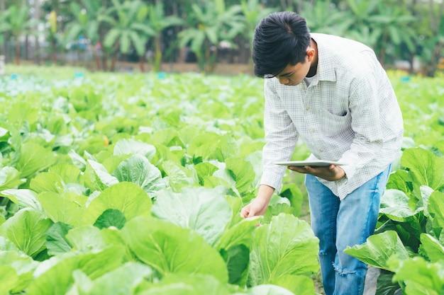 Agriculture intelligente utilisant les technologies modernes en agriculture.