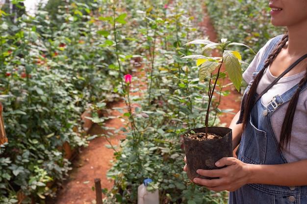 Agriculture. les jeunes femmes inspectent le travail dans la pépinière.