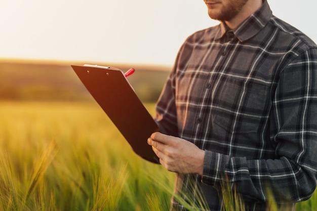 Agronome avec dossier dans le domaine du blé