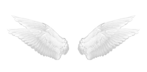 Aile blanche isolée sur fond blanc