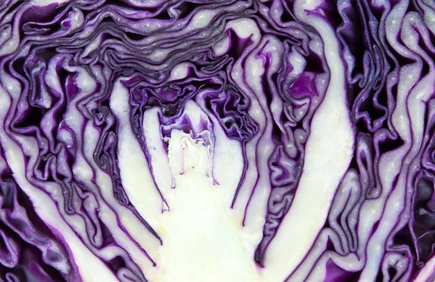 Alimentation plante rip nutritifs rouge