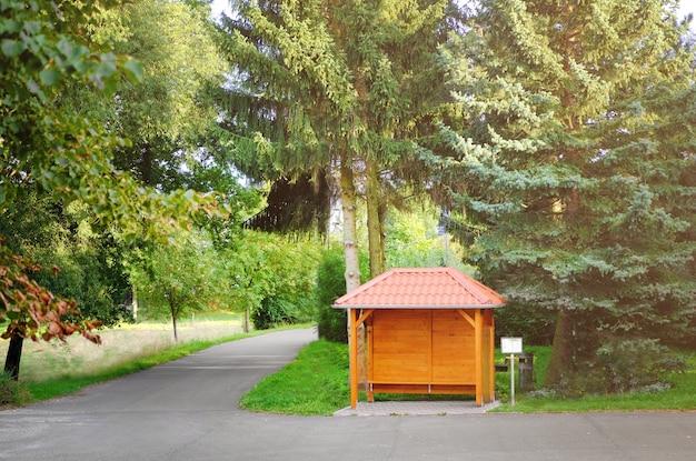 Allée dans un magnifique parc verdoyant