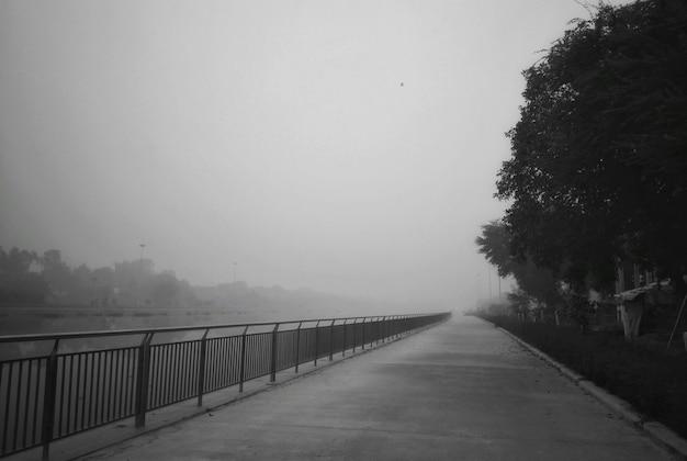 Une allée de parc couverte de brouillard