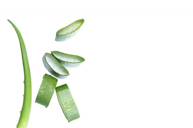 Aloe vera coupé en morceaux