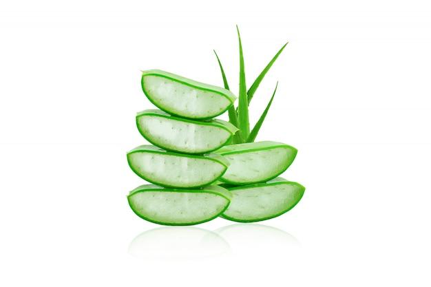 Aloe vera frais isolé sur blanc